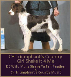 CH Triumphant's Country Girl Shake It 4 Me
